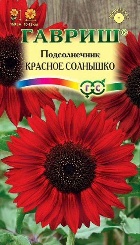 Однолетние цветы красные