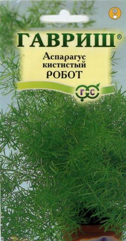 Комнатные растения из семян фото